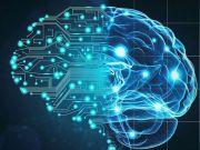 Вчені знайшли матеріал для створення штучного мозку