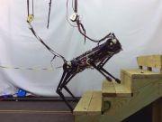 Робот Cheetah навчився ходити наосліп