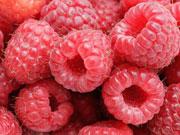 Україна заробила на експорті малини і ожини $1 млн
