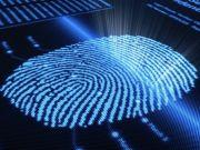 12% українців використовують один і той самий пароль для входу до всіх своїх акаунтів (дослідження)
