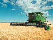 Зарплата в агросекторі зросла на 19%