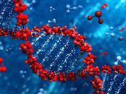 Власти Дубая создадут ДНК-банк своих граждан