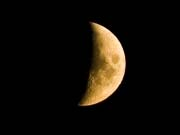 Японський стартап Ispace встановить рекламні щити на Місяці