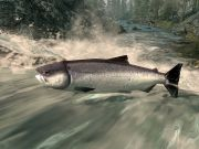 Красной рыбы с Дальнего Востока на всех россиян не хватит - заявили рыбаки Приморья