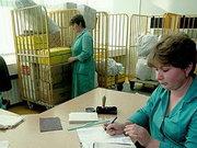 Украинская почта начала работать по новым правилам