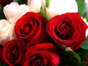 Митна служба підсилила контроль за ввезенням квітів