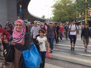 В ООН підрахували, скільки коштуватимуть світу сирійські біженці