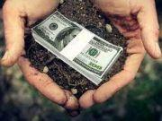 Земля подорожает: сколько дадут за гектар после открытия рынка