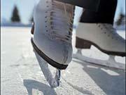 Четвероногий робот научился кататься на коньках (видео)
