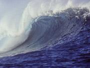 Японець розробив плаваючий електромобіль на випадок цунамі (відео)