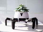Создали робота, который помогает растениям получать нужное количество солнечного света