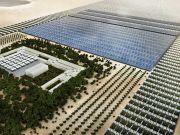 Ферма в пустыне Иордании будет производить 129 тонн овощей в год