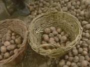 Україна може втратити до 10% врожаю картоплі та овочів – експерт