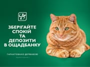 Ощадбанк заработал в 2016 году 464 млн грн