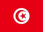 В правительстве Туниса произошли масштабные перестановки