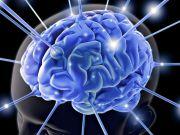 Сигналы мозга могут заменить пароли
