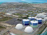 ДнипроОГА привлекла 320 млн грн инвестиций на строительство биогазовой электростанции