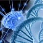 Вчені створили мікролазери, які світяться, для вивчення роботи мозку