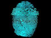 Розробники сканерів відбитків пальців переключилися на ринок ноутбуків