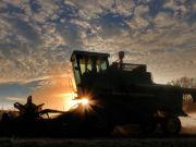 Уряд покладає сподівання на фермерів: як подорожчають продукти в Україні