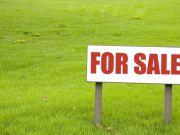 Отсутствие рынка земли тормозит развитие Украины - МВФ