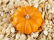 У Хмельницькій області з'явиться завод з переробки гарбузового насіння