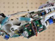 Новий біопринтер друкує функціональні моделі органів