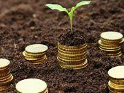 Плательщики Киевщины увеличили выплаты земельного налога