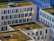 В Германии и Китае здания будут впитывать дождевую воду (видео)