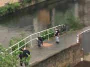 Британец высыпал на мост 15 тысяч монет и проверил реакцию прохожих