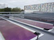 У Франції запустили найбільшу електростанцію з органічних сонячних панелей (фото)