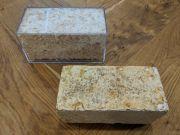 Гриби і бактерії перероблятимуть старі будинки на будматеріали