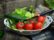 Импорт огурцов и томатов в Украину побил рекорд десятилетия