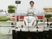 Японія і Абеноміка: неспішно і вдумливо