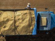 В мире стремительно растут цены на сырье – Bloomberg