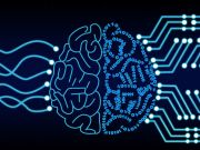 Стало известно, сколько компаний в мире используют системы искусственного интеллекта