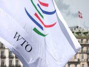 В МЭРТ прокомментировали решение ВТО по транзитным ограничениям РФ