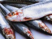 Куда девается украинская рыба