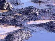 У Закарпатській області стався витік нафти
