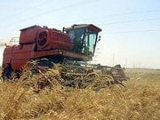 Повышение акцизов на топливо увеличит расходы аграриев более чем на 600 миллионов