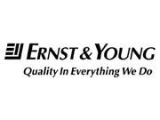 """ФДМ залучив Ernst & Young до процесу приватизації """"Центренерго"""""""