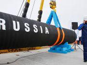 """WWF призвал Меркель остановить строительство """"Северного потока-2"""""""