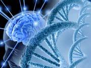 ИИ позволил понять, как работает память во время депрессии