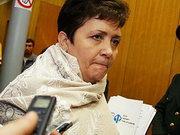 Голова ФДМ підтримує указ президента про призупинення приватизації енергокомпаній