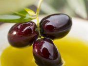 Іранці займуться виробництвом оливок в Україні