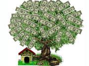 Долар на Міжбанку закінчив понеділок на 11,60 грн