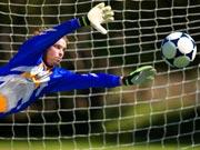 ФИФА введет электронную систему взятия ворот после Евро-2012