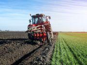 Названо ціну оренди землі в різних областях України