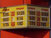 К Новому году курс евро поднимется до 7 гривен