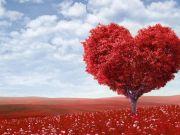 «Экономика любви»: Сколько украинцы тратят на подарки ко Дню святого Валентина (инфографика)